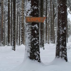 Skifahren auf den Loipen im Hochtaunus bei Frankfurt