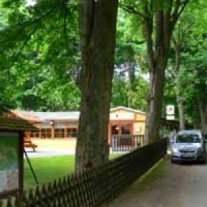 """Waldgasthaus und Pension """"Zum Hirschbrunnen"""""""