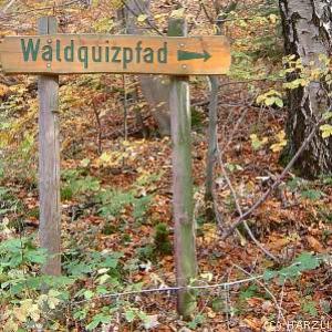 Iberger Waldquizpfad