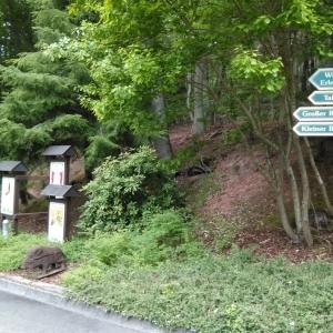 Mami-Check: Kurpfalz-Park