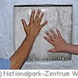 Natonalpark-Zentrum Wyk auf Föhr