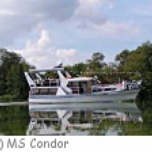 MS Condor