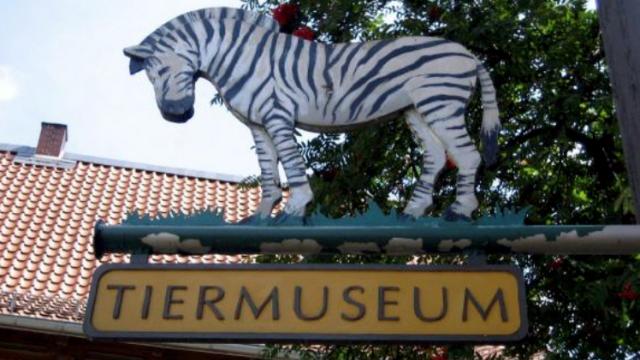 Tiermuseum Alfeld (Leine)