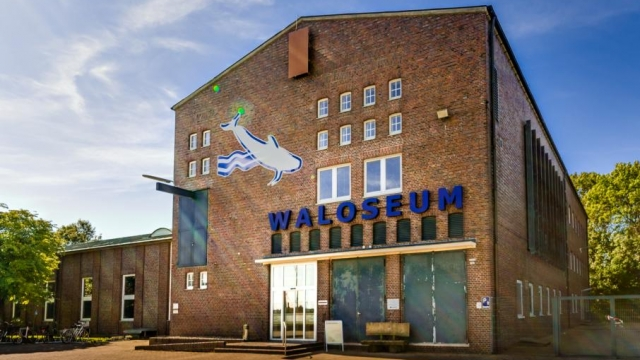 Waloseum