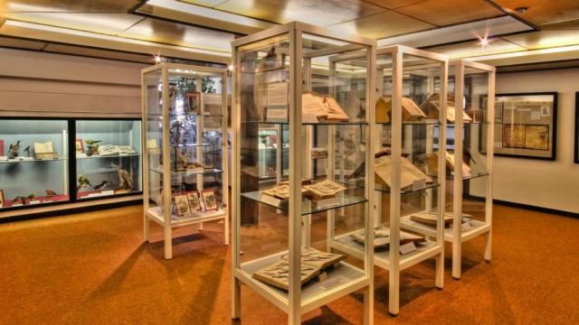 Naumann-Museum in Köthen