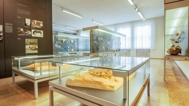 Meteoritenmuseum in Steinheim