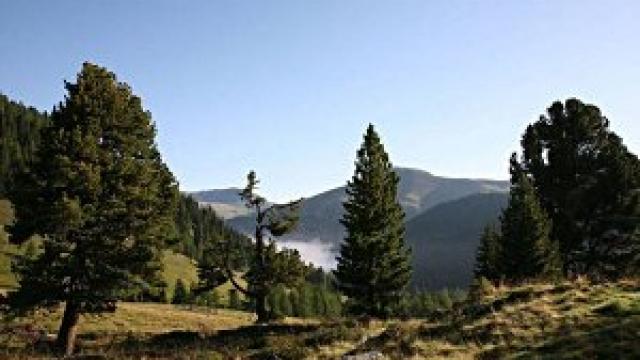Nationalpark Nockberge