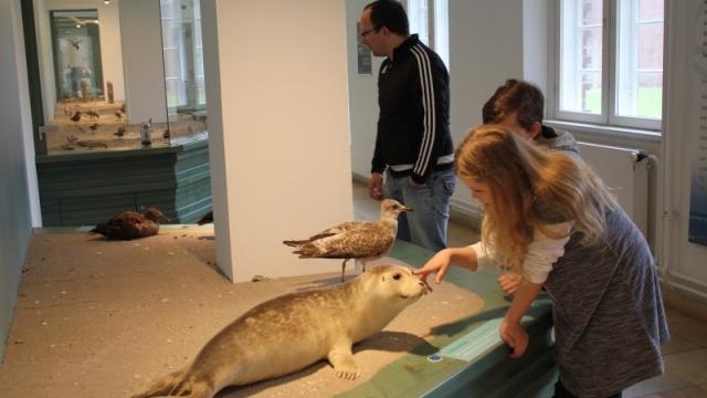 NordseeMuseum Husum