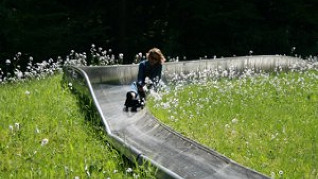 (c) Wild- u. Erlebnispark Daun