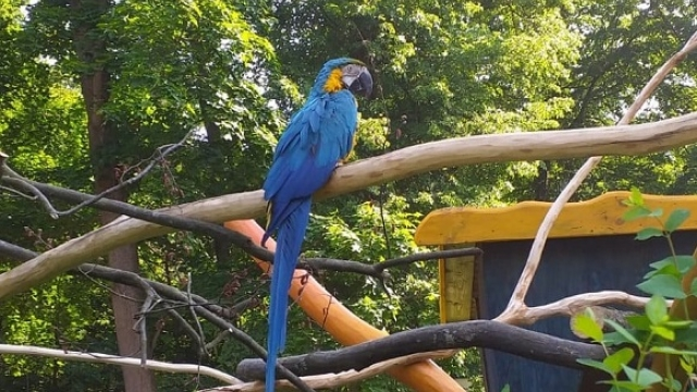Tierpark Zittau